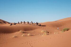 砂漠地帯の陸上交易