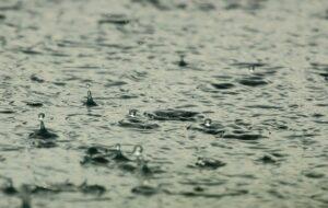雨が降っている